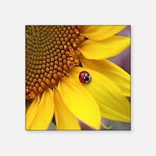 "Ladybug on Sunflower Square Sticker 3"" x 3"""