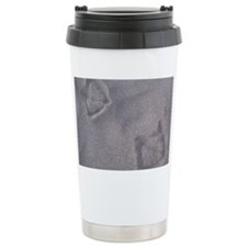 IMG_2779 Travel Coffee Mug