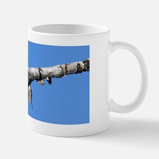 14x6_print 3 Mug