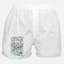 pyram2 Boxer Shorts