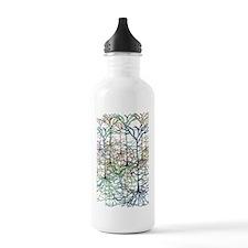 pyram2 Sports Water Bottle