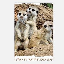 I LOVE MEERKATS! Postcards (Package of 8)