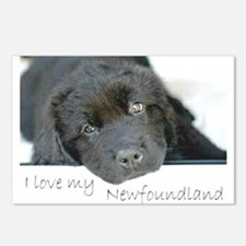 I love my Newfoundland puppy Postcards (Package of