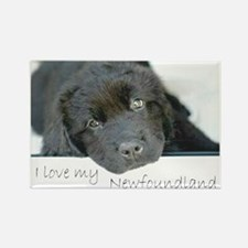 I love my Newfoundland puppy Rectangle Magnet