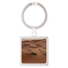 desert Keychains