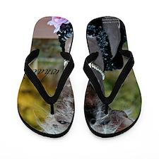 IMG_2907 18x24coC Flip Flops
