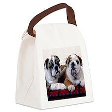 blanket3 Canvas Lunch Bag