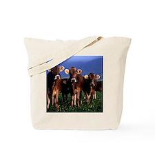 blanket11 Tote Bag