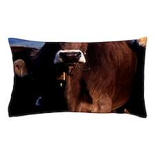 blanket11 Pillow Case
