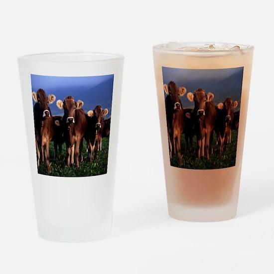blanket11 Drinking Glass