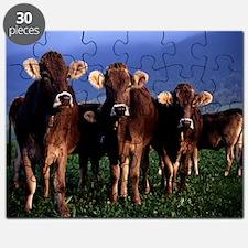 blanket11 Puzzle