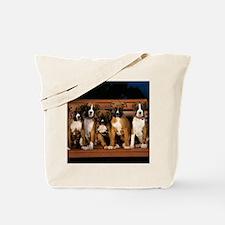 blanket9 Tote Bag