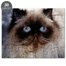 blanket14 Puzzle