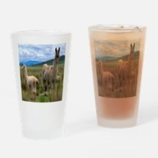 blanket15 Drinking Glass
