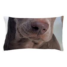 blanket20 Pillow Case
