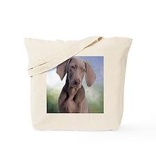 blanket20 Tote Bag
