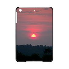 100_3848 iPad Mini Case