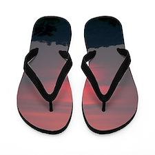 100_3848 Flip Flops