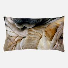blanket27 Pillow Case