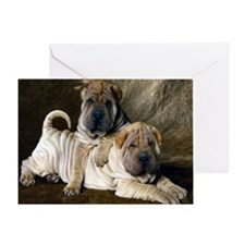 blanket27 Greeting Card