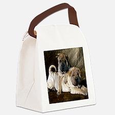 blanket27 Canvas Lunch Bag