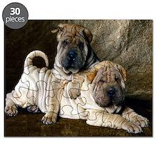 blanket27 Puzzle