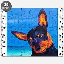 minpin8.511 Puzzle