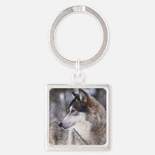Grayly_profileCP Square Keychain