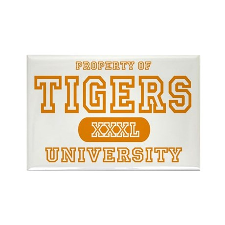 Tigers University Rectangle Magnet (10 pack)