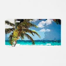 Aruba6 Aluminum License Plate