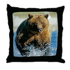 blanket48v Throw Pillow
