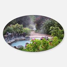 102_3824 Sticker (Oval)