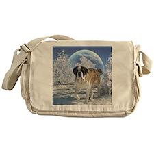 samantha_blanket2 Messenger Bag