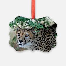 AF09-3074 Ornament