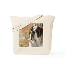 samantha_blanket3 Tote Bag