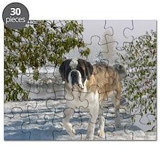 samantha_blanket1 Puzzle