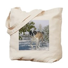 samantha_blanket1 Tote Bag