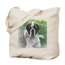 samantha_blanket4 Tote Bag