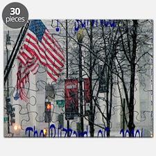 I survived blizzard 2010 Puzzle