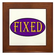 Fixed Framed Tile