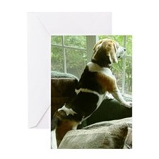 Window gazing Greeting Card