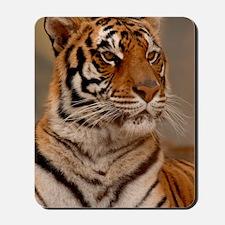 x14 Tiger II Mousepad