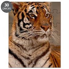 x14 Tiger II Puzzle