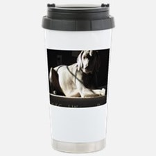 suzi 2 Travel Mug