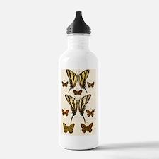 16 17 Papilo ajax 18 2 Water Bottle