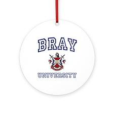 BRAY University Ornament (Round)