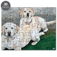 labs Puzzle
