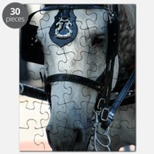 Carriage Horse Puzzle