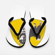 2-transback Flip Flops