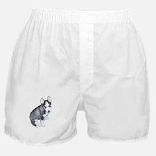 Siberian Husky Puppy Design Boxer Shorts
